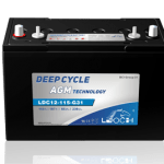 Leoch LDC AGM Battery