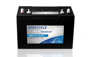 Leoch 12 Volt RV Battery